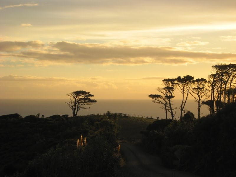 Tasman Sea from Anawhata Road at sunset