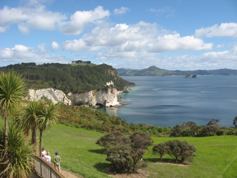 Looking north from the Cathedral Cove carpark along the coast