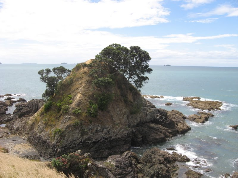 View of the 'island' in Island Bay